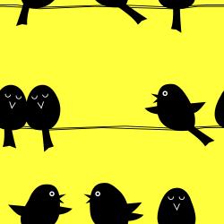 black yellow birds wallpaper pattern background tile